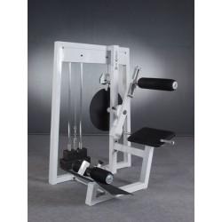 Maszyna na mięśnie prostowników grzbietu i brzucha -dwufunkcyjna