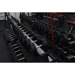 Hantle profesjonalne stałe o wadze od 2,5kg do 90 kg, moletowany i chromowany uchwyt obciążenia skręcane specjalnymi śrubami M16