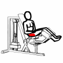 Mięśnie pośladków